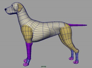 Modeling A Poly Puppy In Maya 2 Free Maya Video Tutorials